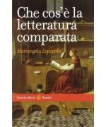 Che cos'è la letteratura comparata - Mariangela Lopopolo